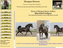 Tablet Preview of dutchmorganhorse.nl